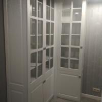 Шкаф-библиотека (2)
